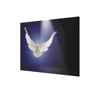 一条の光線を通した鳩の飛行 キャンバスプリント