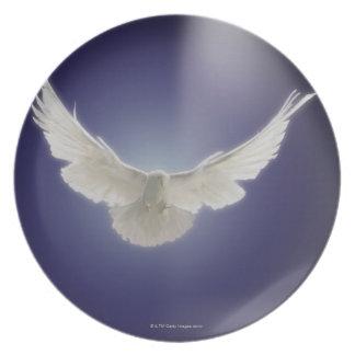 一条の光線を通した鳩の飛行 プレート