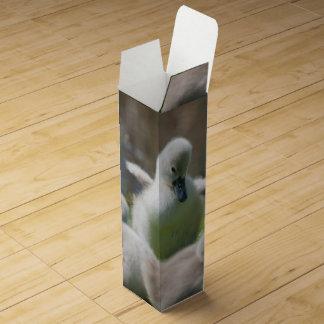 一緒に抱きしめている3羽の赤ん坊の白鳥のCygnetの子ガモ ワインギフトボックス