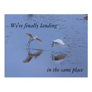 一緒に新しい住所で動いているSnowy白鷺の鷲 ポストカード