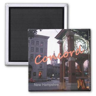 一致のニューハンプシャーの写真の記念品の磁石 マグネット