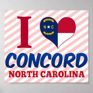 一致、ノースカロライナ ポスター