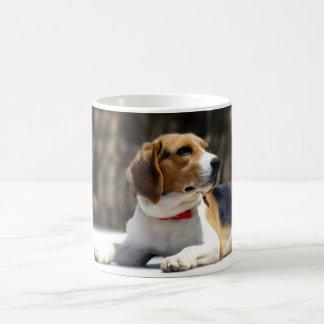 三色のビーグル犬 コーヒーマグカップ
