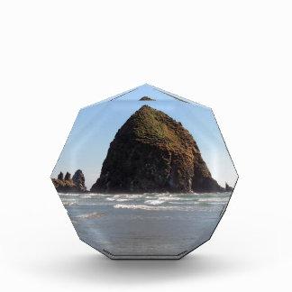 三角波の石 表彰盾