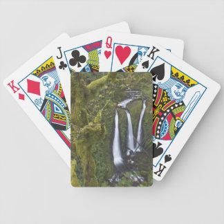 三重の滝、コロンビア川の峡谷2 バイスクルトランプ