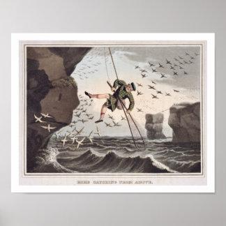 上でからつかまえている鳥Matthew Dubo著刻まれて ポスター