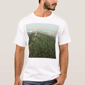 上の写真からのソウル Tシャツ