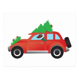 上の木が付いている車を運転するハリアーかビーグル犬 ポストカード