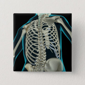 上体6の骨 5.1CM 正方形バッジ