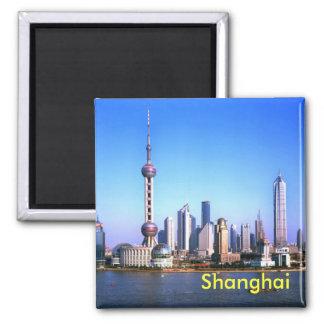 上海の磁石 マグネット