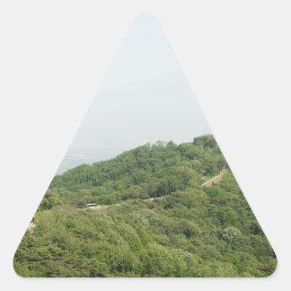 上記の写真撮影からのソウル 三角形シール
