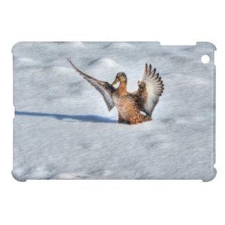 上陸の女性のマガモのアヒルの野性生物の写真 iPad MINIカバー