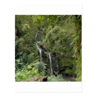 下の成長による滝 ポストカード