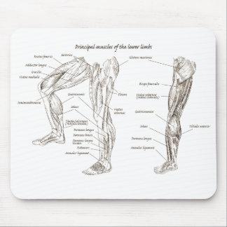 下半身の筋肉 マウスパッド
