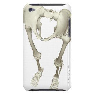 下半身3の骨 Case-Mate iPod TOUCH ケース