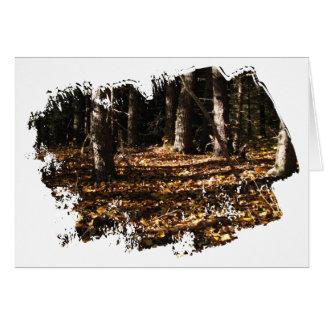 不明瞭な森林の葉 カード