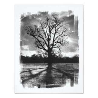 不毛の枝木 カード
