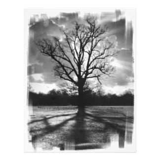 不毛の枝木 チラシ
