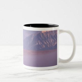 不毛地面カリブー、出産のヤマアラシの群れ ツートーンマグカップ