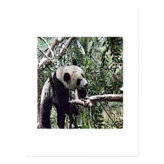 不精なパンダ ポストカード
