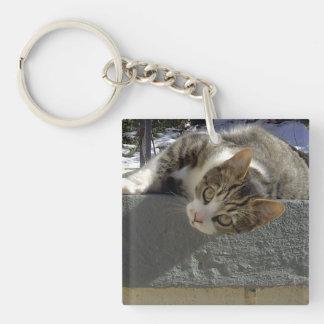 不精な子猫 キーホルダー