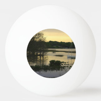 不精な湖 卓球ボール