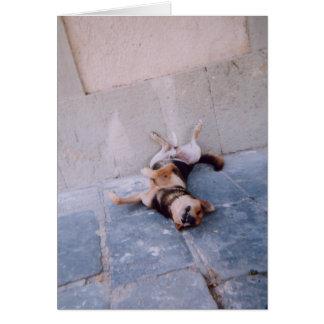 不精な犬 グリーティングカード