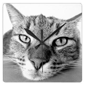 不精な猫 スクエア壁時計