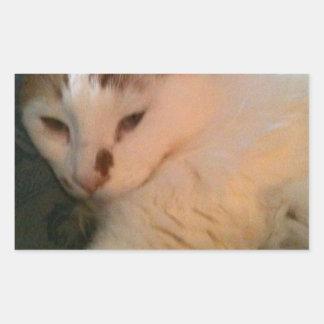 不精な、リラックスした猫 長方形シール