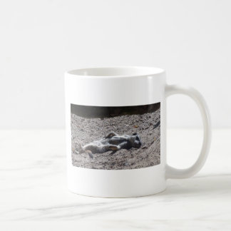 不精なmeercat コーヒーマグカップ