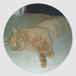 不精|子猫 丸形シールステッカー