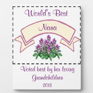 世界で最も最高のなナナはあなたの祖母のNamのためにカスタマイズ フォトプラーク