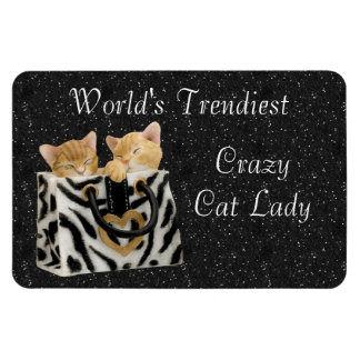 世界でMagnet最も粋で熱狂するな猫の女性 マグネット