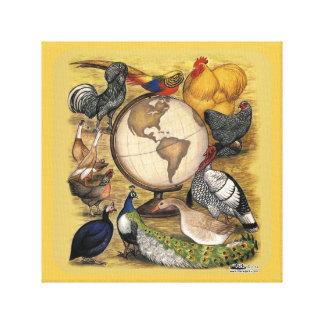 世界の家禽 キャンバスプリント