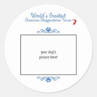 世界の最も素晴らしいアメリカ(犬)スタッフォードテリア ラウンドシール