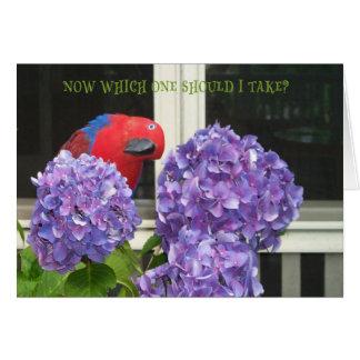 世話人の花 カード