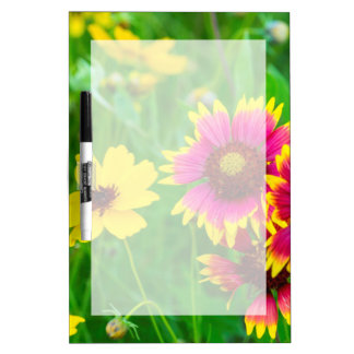 丘の国の草原の野生の花 ホワイトボード
