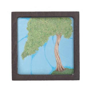 丘の木 ギフトボックス