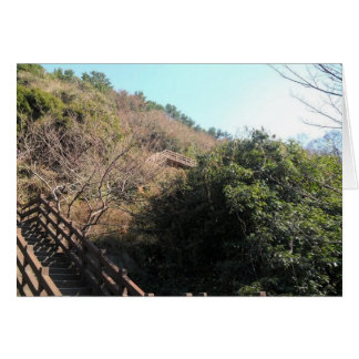 丘の階段 カード