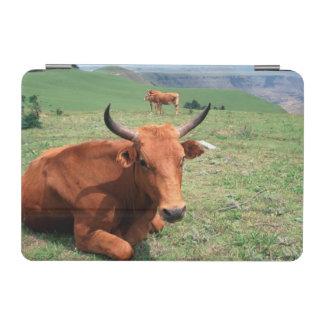 丘、東ケープ州、南アフリカ共和国の牛 iPad MINIカバー