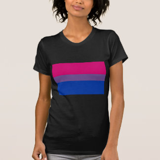両性のプライドの旗 Tシャツ