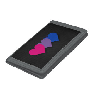 両性愛のプライドのハートの財布
