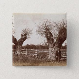 両掛けの木1852年(卵白のプリント) 5.1CM 正方形バッジ