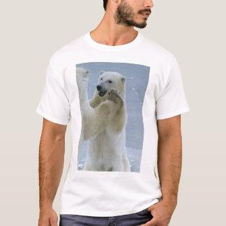 両極クラブ Tシャツ