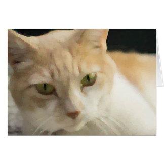 中クリーム色の虎猫猫の挨拶状のブランク カード