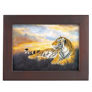 中国のな絵画を休ませている美しいトラの大きな猫 宝石箱