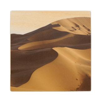 中国、内蒙古のBadain Jaranの砂漠 ウッドコースター