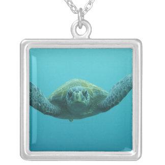 中央アオウミガメ(Cheloniaのmydasのagassisi) シルバープレートネックレス