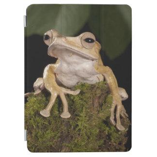 中央PA、米国。 ボロネオの耳付つきのカエル; iPad AIR カバー