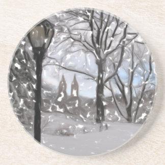 中央Park1の冬 コースター